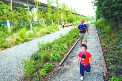 """五道口铁路遗址变身""""绿色长廊""""穿行城市间"""