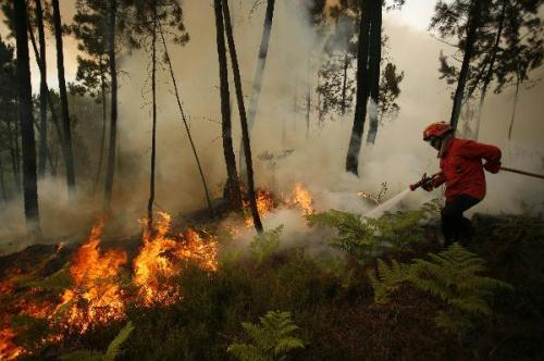 A firefighter works on a fire front on the Arada mountain near Sao Pedro do Sul, northern Portugal, Monday, Aug. 9, 2010. Firefighters in Portugal were continuing to battle raging brush fires on Monday - they say some have been contained, but others are still burning out of control. (Xinhua/Reuters Photo)