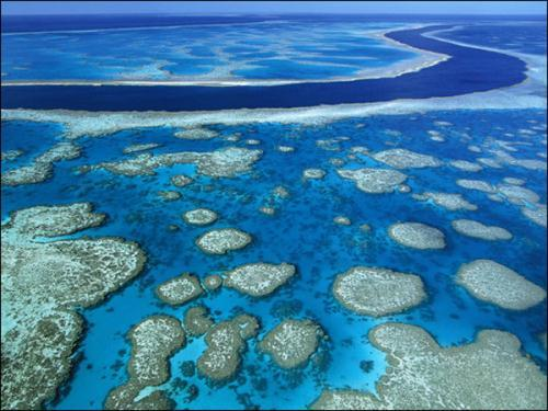 No. 3 Great Barrier Reef,Australia (Photo Source: gb.cri.cn)