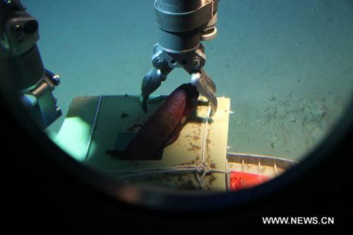 "The file photo shows the submersible ""Jiaolong"" catching a sample of deep sea's living beings during one dive in the South China Sea in July of 2010. A China-made manned submersible, dubbed ""Jiaolong"" and designed to dive to a depth of 7,000 meters, had successfully reached 3,759 meters beneath the waves during a manned test, the Ministry of Science and Technology and the State Oceanic Administration (SOA) of China announced Thursday. It made China the fifth country, following the United States, France, Russia and Japan, to have the technologies for a manned dive to more than 3,500 meters below sea level. (Xinhua)"