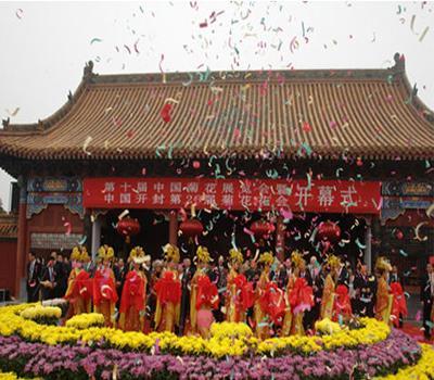 第十届中国菊花展会获奖菊花在开封龙亭公园展出