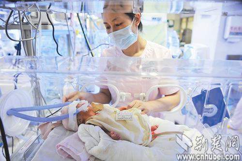 图为:医护人员在照料新生儿