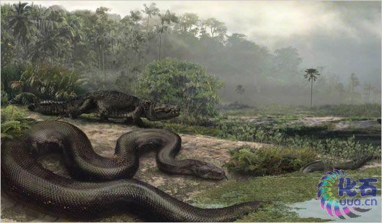 十四种怪异的灭绝动物-探索未知之谜-互动小组