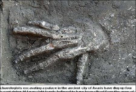 考古学家发现的右手骨骸(网页截图)