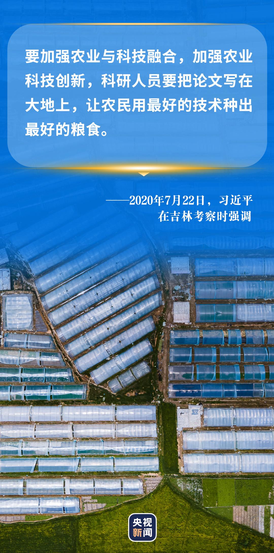 """习近平心中的""""三农""""画卷(图8)"""