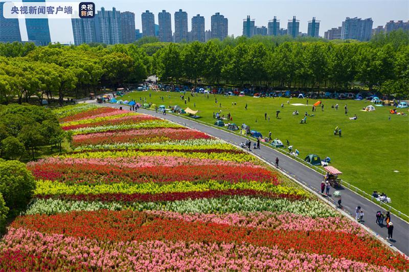"""上海大力推进公园免费和延时开放 至""""十四五""""末公园将超千座"""