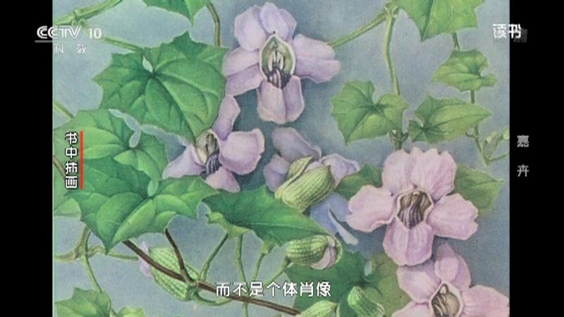 《读书》 20201201 张寿洲/马平 《嘉卉 百年中国植物科学画》 嘉卉