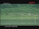 中国空军秘档 东北老航校风云录 第四集 [发现之路]