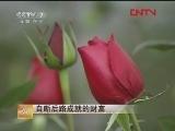 [致富经]节目合集20120118-0327