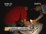南宁宾阳傅剑林养鸡:八年默默无闻 一招峰回路转