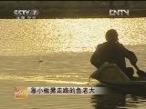 浙江湖州仲永根水产养殖:靠小板凳走路的鱼