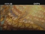 《探索·发现》 20120603 《手艺Ⅱ——景泰之蓝》