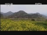 《探索·发现》 20120604 《手艺Ⅱ——马尾绣锦》