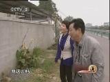 杨金泉养毒蛇:我才是蛇王