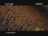 《茶叶之路》 20120717 第九集 建盏演义