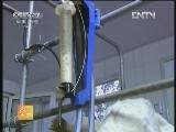 《农广天地》 20120722 崂山奶山羊养殖技术