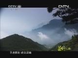 《茶叶之路》 第二十集 庐山云雾