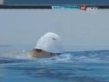 [夺金时刻]1500米自由泳 孙杨破世界纪录强势夺冠