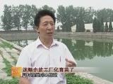 泥鳅也能工厂化育苗了_致富经