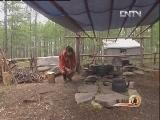 布冬霞驯鹿:密林中的神秘财富