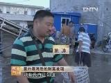 姚涛小杂鱼:意外落海后的财富发现