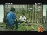 《走遍中国》20121012中国古镇(52)瞿家湾:洪湖新传