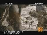 《走遍中国》20121017中国古镇(57)哈达铺:生死之地