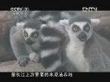《中国武警》 20121028 跑马山下溜溜的兵