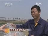 养鱼技术科技苑:给鱼池装栅栏干什么