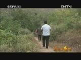 《身边的感动》 20121123 老郭的向阳幸福院(下)