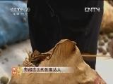 胡凤翔油茶致富经:奇招连出的创富达人