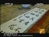 《走遍中国》中国古镇(101)小榄镇:菊城菊艺