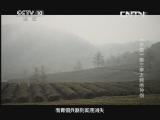 《探索·发现》 20130521 《手艺》第三季之越绝神剑