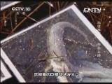 《地理中国》 20130626 秘境零距离-神秘入侵 (下)