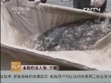 王斌水产加工致富经,28岁副处长辞职养大鱼