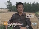 赵树英有机农业致富经,郁闷男人 靠虫成名