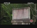 黄山 20130802 天人