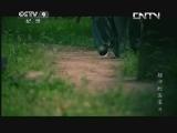 《人文地理》 20130801 颠沛的国宝 第八集 关中奇禁 下