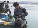鲍鱼养殖农广天地,皱纹盘鲍浮筏养殖技术