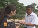 [科技苑]奇树长出的怪果子(20131002)