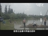 《味道》 20131007 广州 顺德