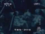 《世界纪录电影长廊》 20131217 动物世界:蝎亦柔情