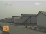 [农广天地]西葫芦冬春茬栽培技术(20140101)