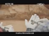 《探索发现》 20140225 古墓风云(中)
