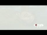 电视剧《大河儿女》性格篇60秒片花