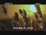 《百年潮 中国梦》 第五集 筑梦天下 00:37:53