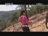 鞠肖男茶叶致富经,究竟到底 寻千年宝贝(20140612)