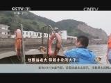 郑恩苍渔业致富经,他要当老大 带着小吃闯天下(20140623)
