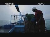 《时代》 20140624 魅力马尔代夫 第二集 蓝色生机