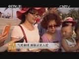 [每日农经]气成刺球 刺豚反惹人爱(20140707)